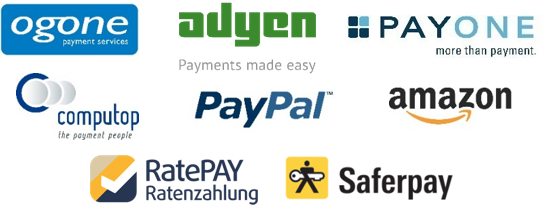 Eco System Payment