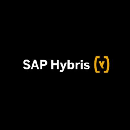 sap hybris global summit background